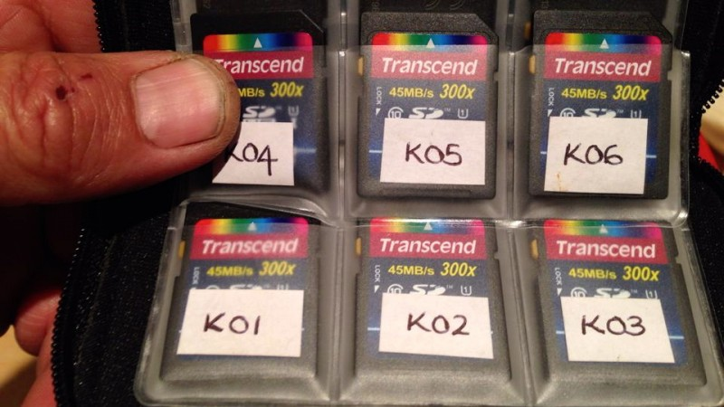 SD Cards Labelled