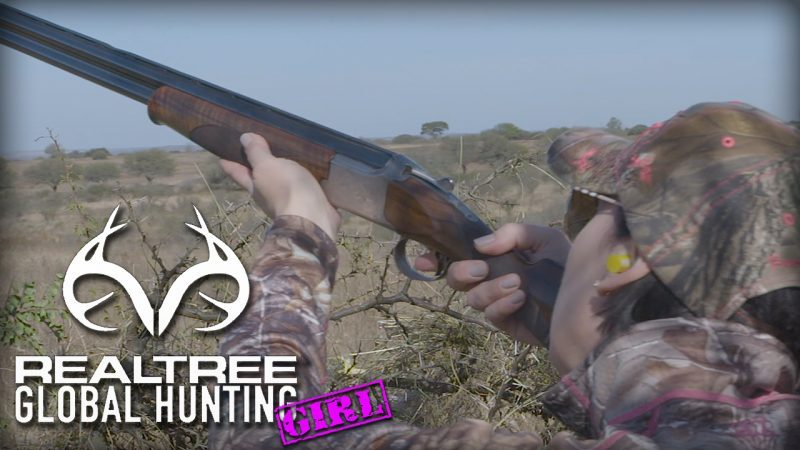clare-pigeon-shooting-800x450