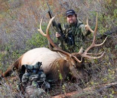 Hunting for Bear and Elk in Northern Idaho