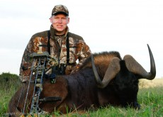 My first black wildebeest with my new Bear Carnage Bow