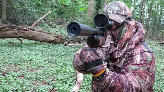 Woodland Shooting With The Airguns