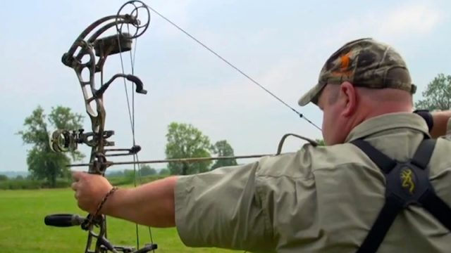 Bear Anarchy Bow Review