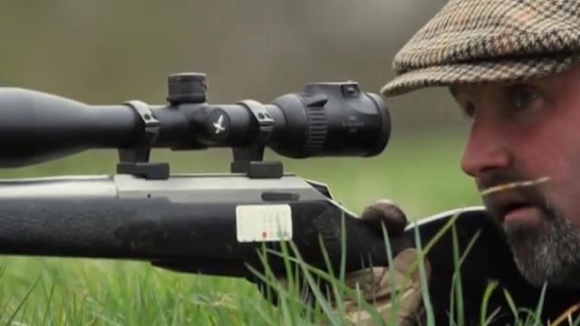 Hunting with the Huntsman: Stalking for Muntjac Deer