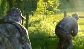 EPIC Roe Deer Stalking in Hampshire