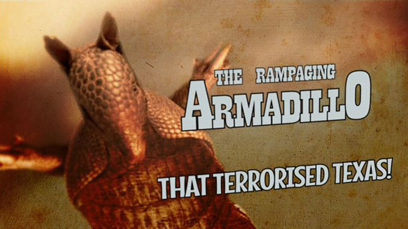 The Rampaging Armadillo that Terrorised Texas