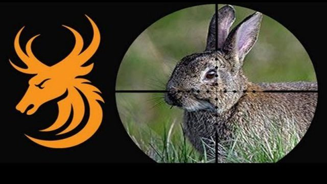 Airgun Hunting: Rabbits in Texas with the Benjamin Marauder and NiteSite NS200