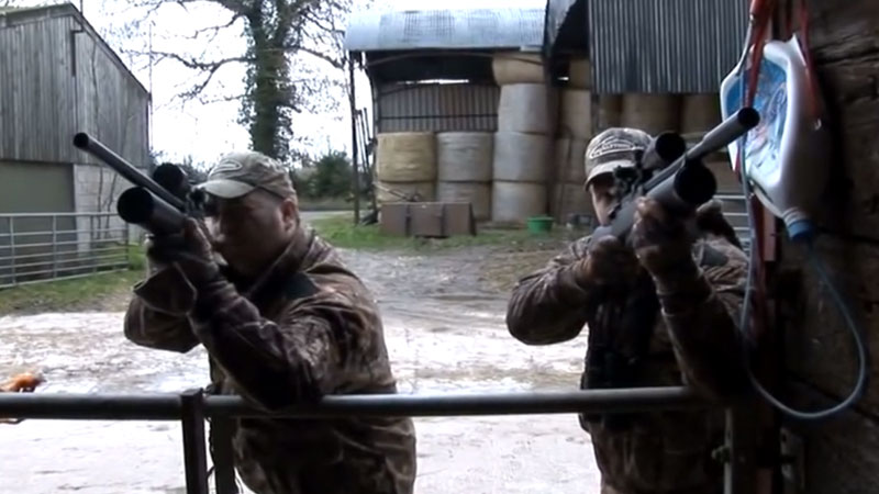 Airgun Hunting – Shooting feral pigeons with a Daystate Air Ranger