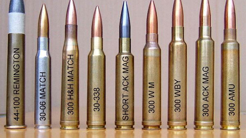 There is just and many choices when it comes to ammo!