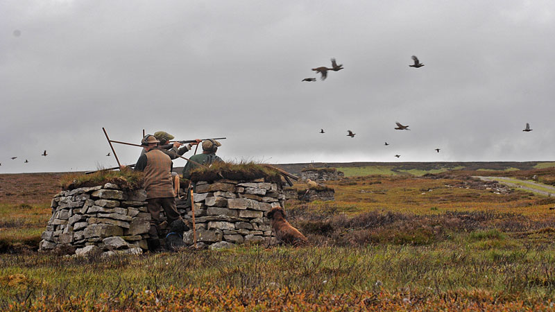 8 Tips To Grouse Success