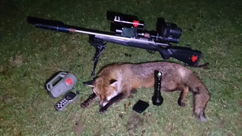 Fox Control With Team Wild Expert Eddie Nash.