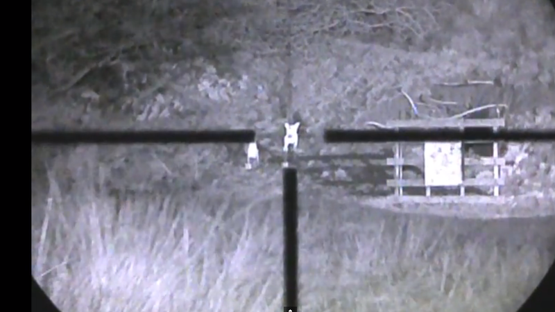 Long Range Target Shooting at Night