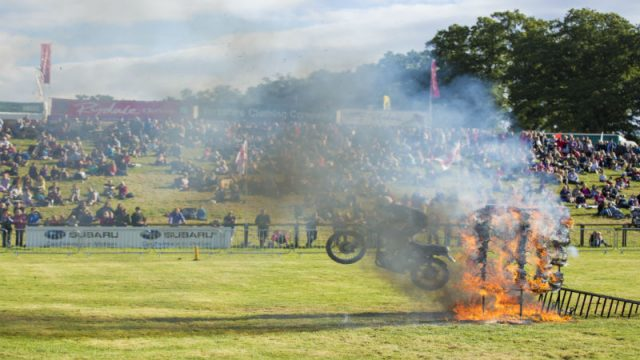 2015 Lowther Show Round Up