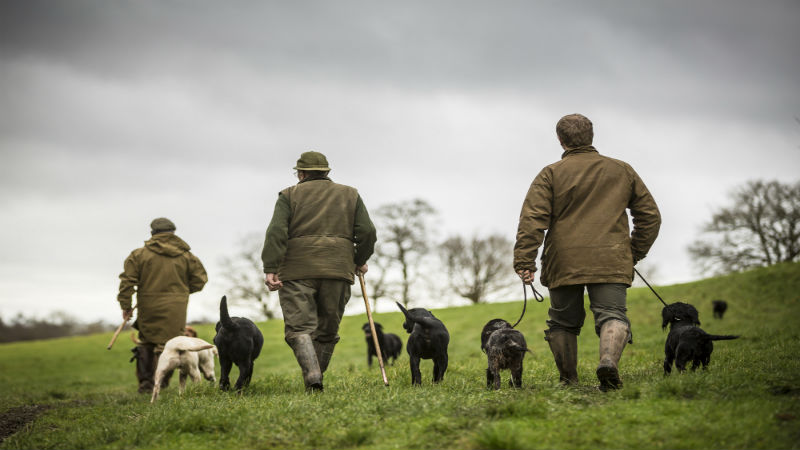 A Day In The Life Of: GBS Gundogs & Picker Ups With Kev Jenkins