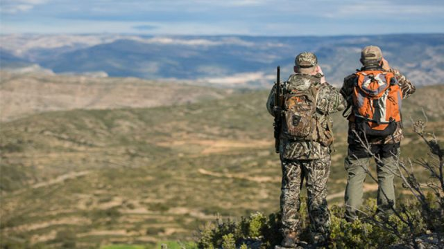Hunting Beceite Ibex in Spain