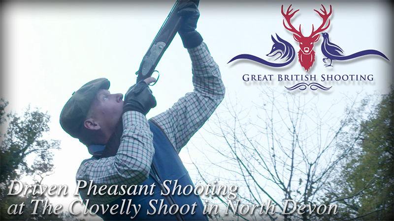 Driven Pheasant Shooting at The Clovelly Shoot in North Devon