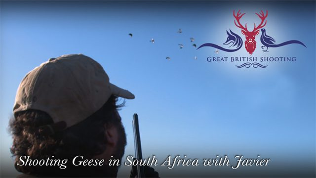 Shooting Geese in South Africa