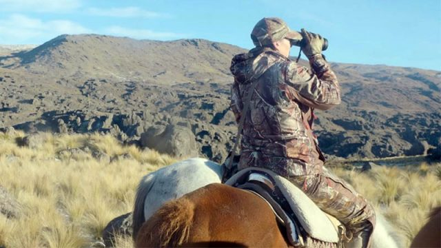 Clare Harford Hunting Multi Horned Rams In Argentina