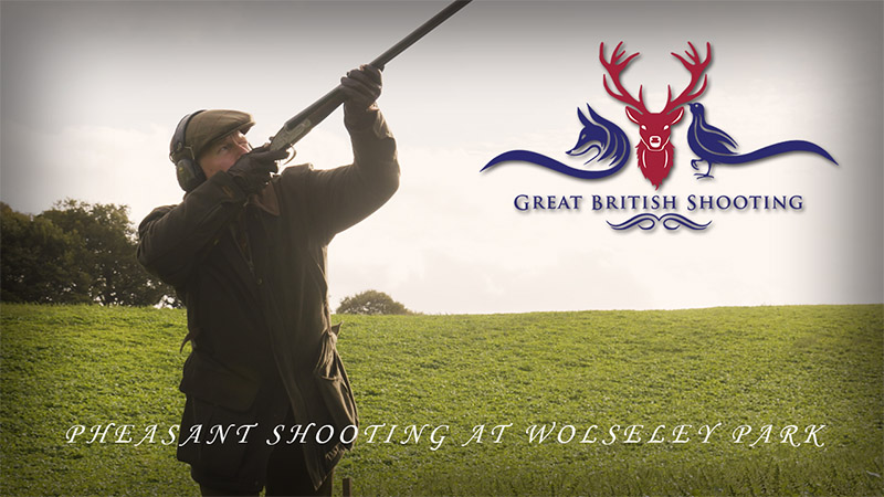 Great British Shooting: Pheasant Shooting at Wolseley Park