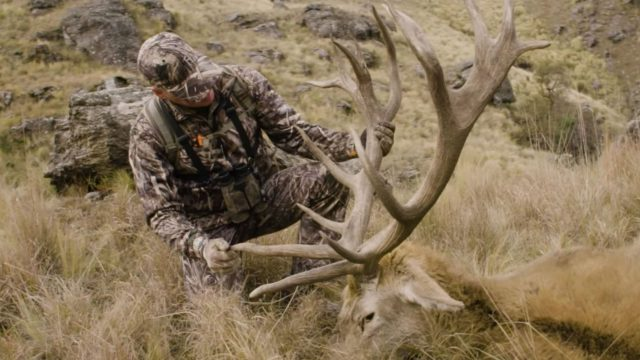 Hunting Giant Red Stags in Argentina