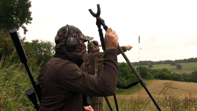 Hunting Roebucks at Sunrise with Ian Harford