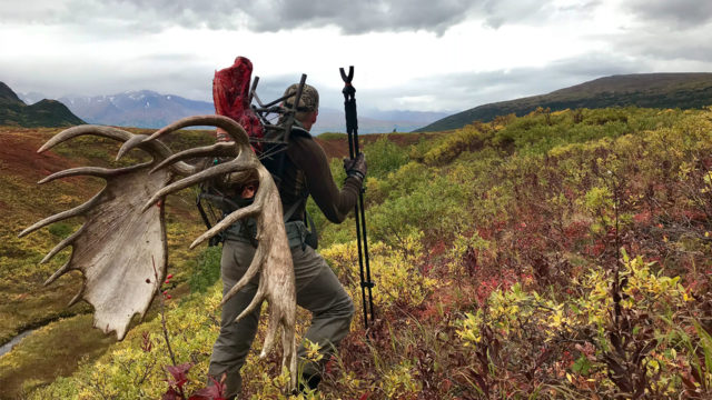 Self-Guided Hunting in Alaska: Episode 9 – Epic Alaskan Moose Hunt
